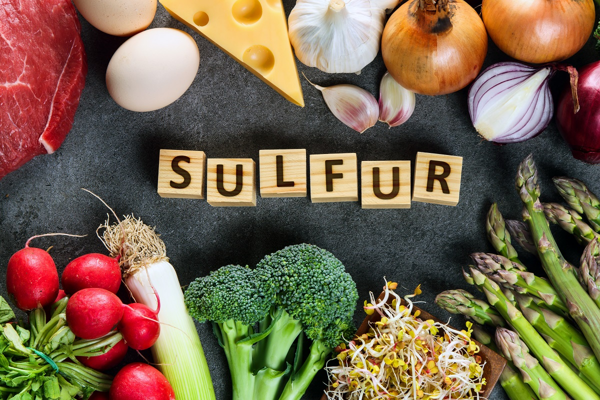 Food rich in sulfur